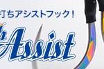 sn-p-flashassist.jpg